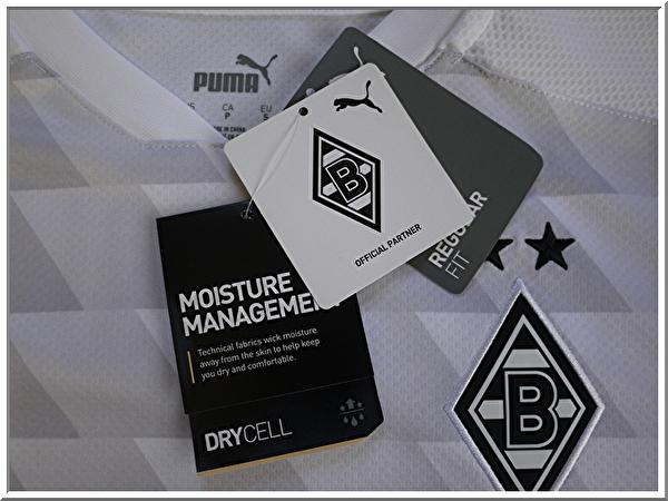 BMG-SH2021